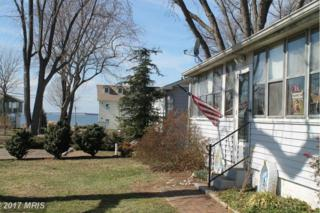 105 Baltimore Drive, Stevensville, MD 21666 (#QA9869932) :: Pearson Smith Realty