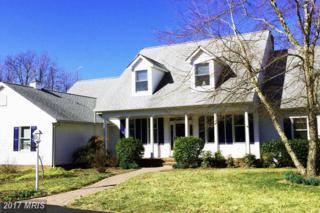 116 Carville Court, Stevensville, MD 21666 (#QA9874204) :: LoCoMusings