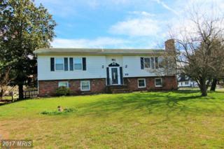 225 Nichols Manor Drive, Stevensville, MD 21666 (#QA9888039) :: LoCoMusings