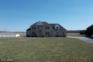 206 Beck Farm Road, Centreville, MD 21617 (#QA9889865) :: LoCoMusings