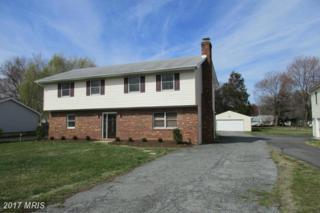705 Dixon Drive, Stevensville, MD 21666 (#QA9890798) :: Pearson Smith Realty