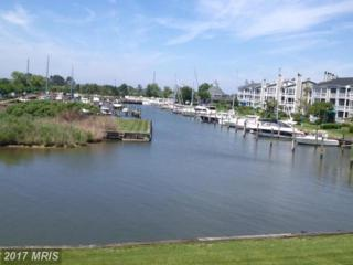 712 Oyster Cove Drive, Grasonville, MD 21638 (#QA9891122) :: LoCoMusings