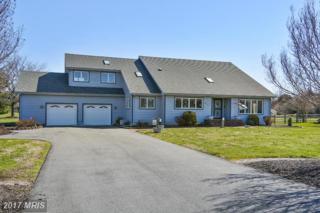 208 Prospect Bay Drive W, Grasonville, MD 21638 (#QA9896017) :: Pearson Smith Realty