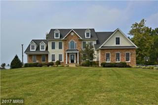 302 Whistling Swan Way, Queenstown, MD 21658 (#QA9902307) :: Pearson Smith Realty