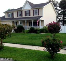 Grasonville, MD 21638 :: Pearson Smith Realty