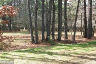 Pennick Drive, Stevensville, MD 21666 (#QA9905133) :: Pearson Smith Realty