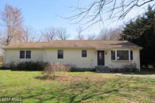 124 Scottown Road, Queenstown, MD 21658 (#QA9907890) :: Pearson Smith Realty