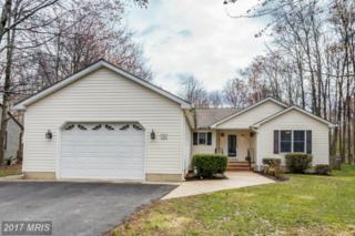 706 Cloverfields Drive, Stevensville, MD 21666 (#QA9911093) :: Pearson Smith Realty