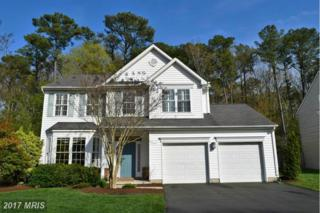 129 Web Foot Lane, Stevensville, MD 21666 (#QA9915711) :: Pearson Smith Realty