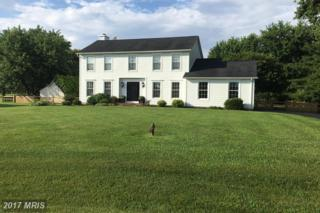 4 Caddy Court, Grasonville, MD 21638 (#QA9916836) :: Pearson Smith Realty