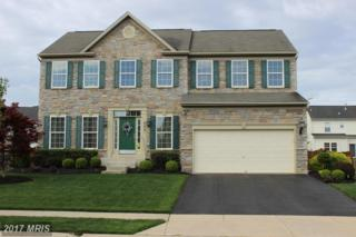 552 Brookfield Drive, Centreville, MD 21617 (#QA9919996) :: Pearson Smith Realty