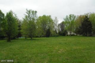 LOT 42 Virginia Road, Stevensville, MD 21666 (#QA9921593) :: Pearson Smith Realty
