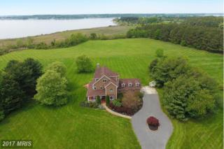 2818 Cox Neck Road, Chester, MD 21619 (#QA9928407) :: Pearson Smith Realty