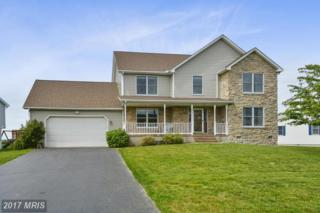 911 Long Point Road, Grasonville, MD 21638 (#QA9929700) :: Pearson Smith Realty