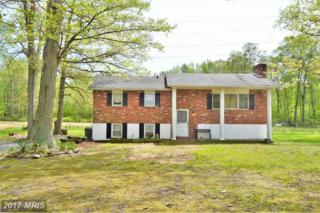 1100 Red Lion Branch Road, Millington, MD 21651 (#QA9931117) :: Pearson Smith Realty