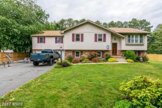 105 Rutledge Road, Queenstown, MD 21658 (#QA9931230) :: Pearson Smith Realty