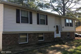 207 Olive Branch Road, Stevensville, MD 21666 (#QA9931854) :: Pearson Smith Realty