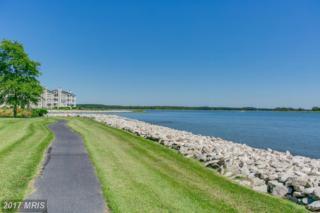 1411 Oyster Cove Drive, Grasonville, MD 21638 (#QA9934323) :: Pearson Smith Realty