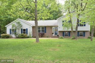 814 Buckingham Drive, Stevensville, MD 21666 (#QA9937876) :: Pearson Smith Realty
