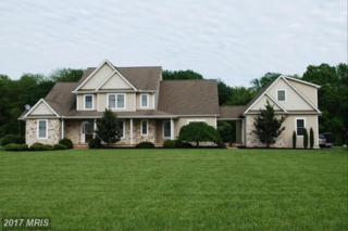 127 White Tail Court, Centreville, MD 21617 (#QA9939906) :: Pearson Smith Realty