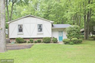 312 Mckay Road, Stevensville, MD 21666 (#QA9940038) :: Pearson Smith Realty