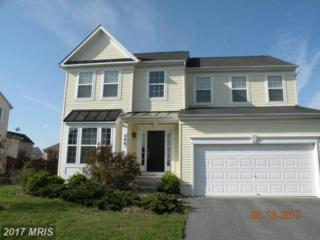 546 Brookfield Drive, Centreville, MD 21617 (#QA9948162) :: Pearson Smith Realty