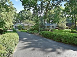 5 Prospect Bay Drive W, Grasonville, MD 21638 (#QA9952501) :: Pearson Smith Realty