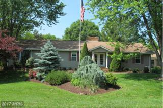 200 Holly Thicket, Stevensville, MD 21666 (#QA9952597) :: Pearson Smith Realty