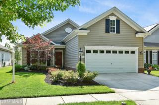 217 Opera Court, Centreville, MD 21617 (#QA9953014) :: Pearson Smith Realty