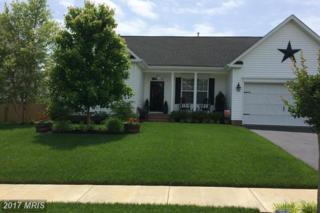 182 Meadow Brook Way, Centreville, MD 21617 (#QA9953893) :: Pearson Smith Realty