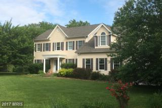 143 Cavalry Court, Centreville, MD 21617 (#QA9954043) :: Pearson Smith Realty