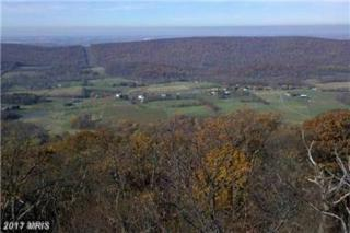 Shot Gun Springs Road, New Market, VA 22844 (#RO9950040) :: Pearson Smith Realty