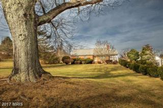 915 Fodderstack, Flint Hill, VA 22627 (#RP9842247) :: Pearson Smith Realty