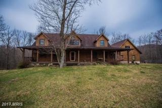 284 Little Long Mountain Lane, Huntly, VA 22640 (#RP9879890) :: Pearson Smith Realty