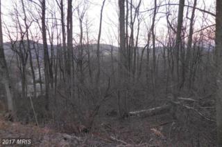 Avery Drive, Chester Gap, VA 22623 (#RP9886273) :: Pearson Smith Realty
