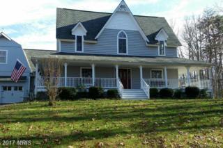 794 Turkey Ridge Road, Castleton, VA 22716 (#RP9902799) :: LoCoMusings