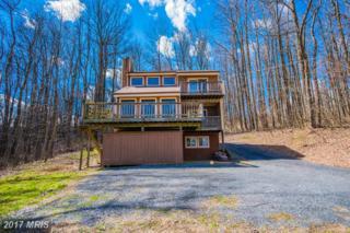 50 Rock Ridge Lane, Chester Gap, VA 22623 (#RP9907062) :: Pearson Smith Realty