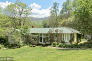 37 Sycamore Ridge Road, Sperryville, VA 22740 (#RP9923993) :: Pearson Smith Realty