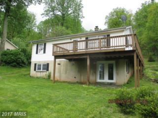 151 Blue Ridge Avenue, Chester Gap, VA 22623 (#RP9948585) :: Pearson Smith Realty