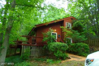 462 Hackleys Mill Road, Amissville, VA 20106 (#RP9956091) :: Pearson Smith Realty