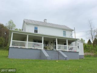 32 Headwaters Road, Chester Gap, VA 22623 (#RP9956518) :: Pearson Smith Realty