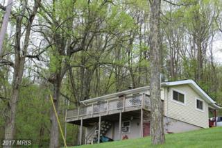 45 Headwaters Road, Chester Gap, VA 22623 (#RP9956521) :: Pearson Smith Realty