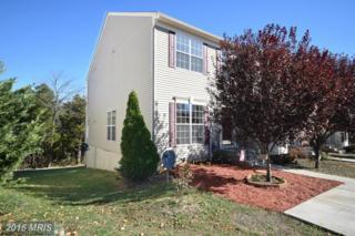 163 Oxbow Drive, Strasburg, VA 22657 (#SH9807359) :: Pearson Smith Realty