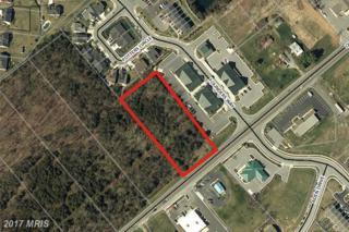 0 Old Valley Pike, Strasburg, VA 22641 (#SH9844359) :: Pearson Smith Realty