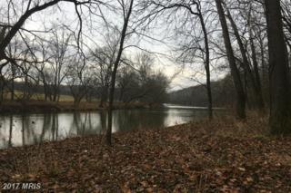 Deer Rapids Road, Strasburg, VA 22657 (#SH9844969) :: LoCoMusings