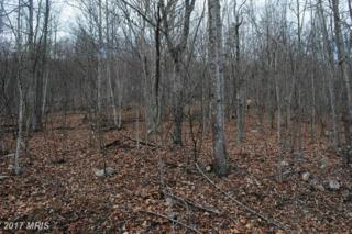 Sunrise Hill, Fort Valley, VA 22652 (#SH9848849) :: Pearson Smith Realty