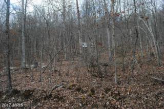 Sunrise Hill, Fort Valley, VA 22652 (#SH9848867) :: Pearson Smith Realty