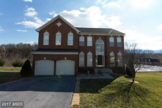 439 Meghann Drive, Woodstock, VA 22664 (#SH9851326) :: Pearson Smith Realty