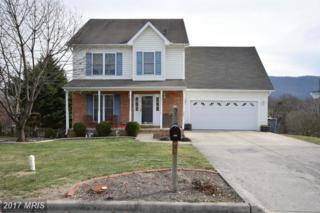 924 Seldon Drive, Strasburg, VA 22657 (#SH9858013) :: Pearson Smith Realty