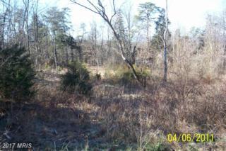0 Cedar Lane, Woodstock, VA 22664 (#SH9859295) :: LoCoMusings